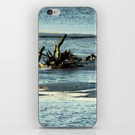 Driftwood In The Marsh iPhone Skin