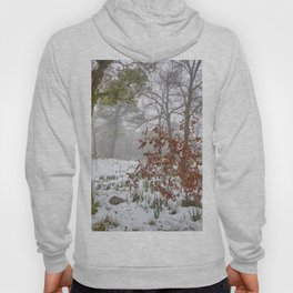 Foggy Oaks. Snowing Into The Woods Hoody