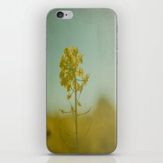 Spring Sun iPhone & iPod Skin