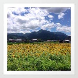 Sunflowers in Japan Art Print