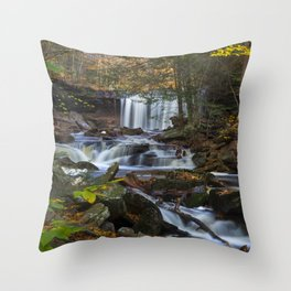 Oneida Falls Throw Pillow