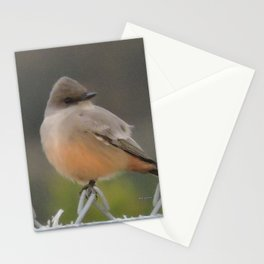 Say's Phoebe at Dusk Stationery Cards