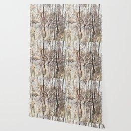 Beyond Cracks Wallpaper