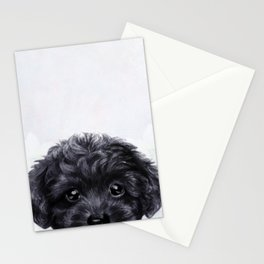 Toy poodle Black Stationery Cards