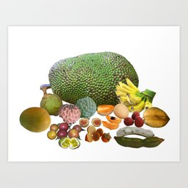 Exotic Fruit Art Print
