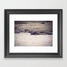 Hippo pod Framed Art Print