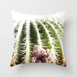 Cactus in the Sunlight Throw Pillow