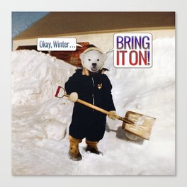Okay, Winter . . . Bring it on! Canvas Print