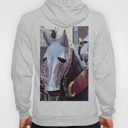 Armoured Horse And Knight Hoody
