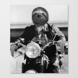 Biker Sloth #2 Canvas Print