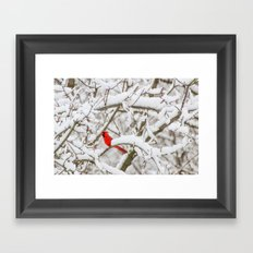 April Snowfall I Framed Art Print