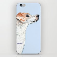 Jack Russell Terrier 2 iPhone & iPod Skin