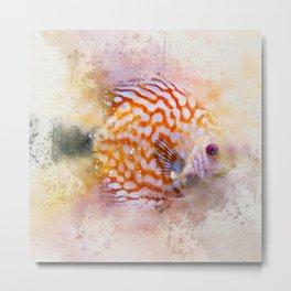 Discuss Fish Metal Print