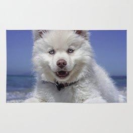 Beach Dog Rug