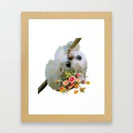 Floral Sloth (transparent) Framed Art Print