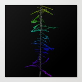 Witch Ladder Canvas Print