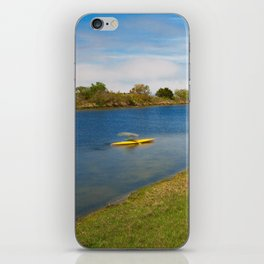 Assateague Island Marsh iPhone Skin