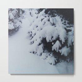 Winter Chills Metal Print