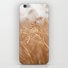 Windblown iPhone & iPod Skin
