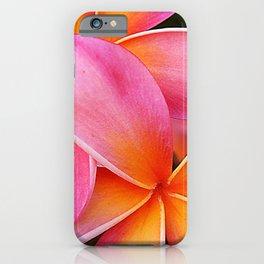 Pink Plumeria Flowers With Lavish Tangerine Accents iPhone Case