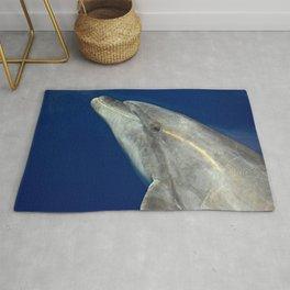 Bottlenose dolphin portrait Rug