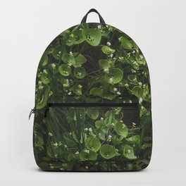 hedge Backpack