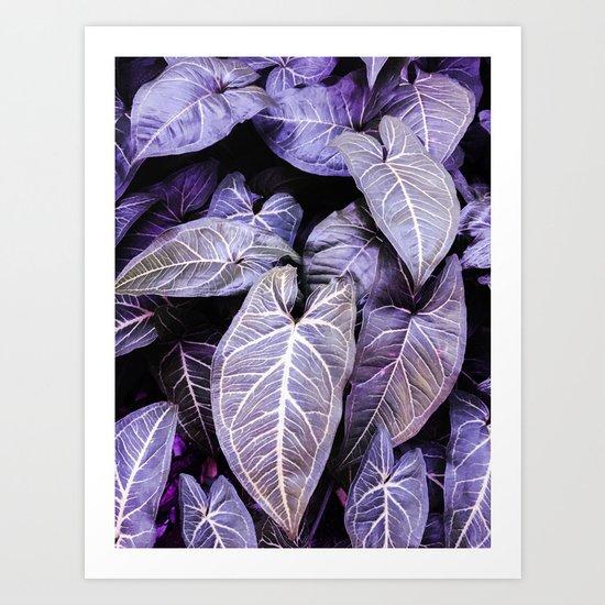 Jungle leaf - amethyst Art Print