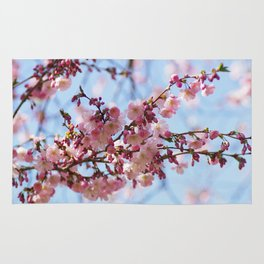 Almond blossoms Rug