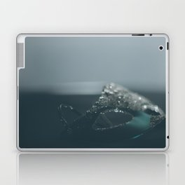 Unknown Laptop & iPad Skin