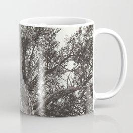 Growth | Estes Park, Colorado Coffee Mug