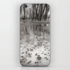 Frozen iPhone & iPod Skin