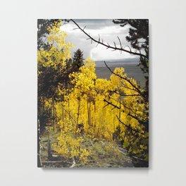A Mountainside Fire of Gold Metal Print