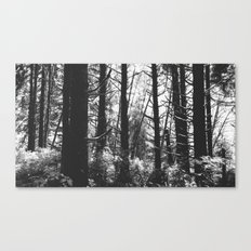 Fuzzy Canvas Print