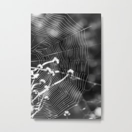Where is the spider? Metal Print