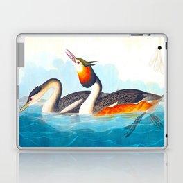 Great Crested Grebe Bird Laptop & iPad Skin