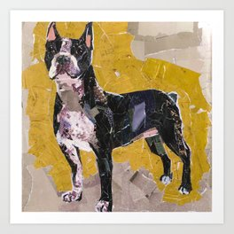 Boston Terrier 3 Art Print