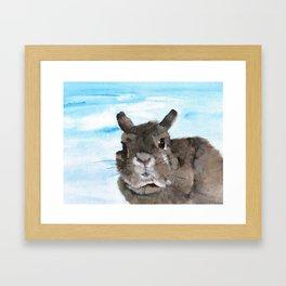 Peanut the Netherland dwarf rabbit, Easter, Nursery Framed Art Print