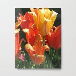 Golden Blooms Metal Print