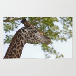 Why wasn't the Giraffe invited to the party? Rug