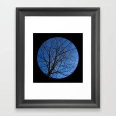 Trees from below 7 Framed Art Print