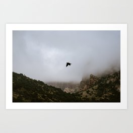 Free as a bird flying through the mountains, Big Bend - Landscape Photography Art Print