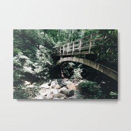Bridging Nature Metal Print