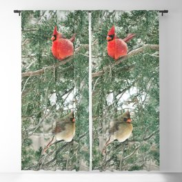 Tree for Two (Northern Cardinals) Blackout Curtain