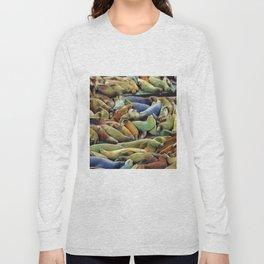 Sea Lion Siesta Pier 39 Long Sleeve T-shirt