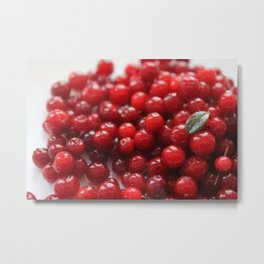 Wild red berries and little leaf Metal Print