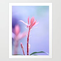 Sunkissed Spring Beauty Art Print