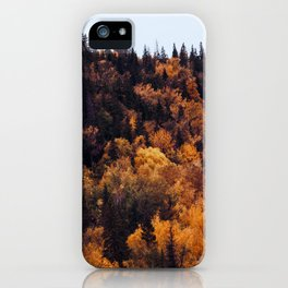 Beautiful Autumn Forest Orange & Brown Leaves iPhone Case