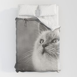 Space Meow 2 Comforters