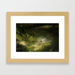 Duck in the Spotlight Framed Art Print
