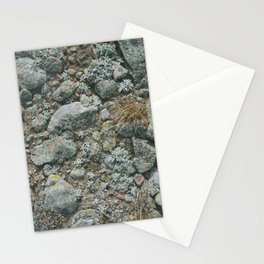 rabbit mountain Stationery Cards